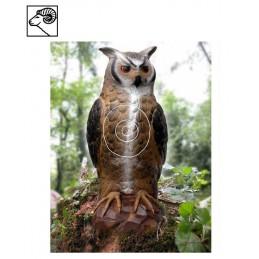 SRT OWL