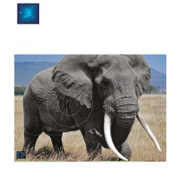 ACTILIA BLASON ELEPHANT