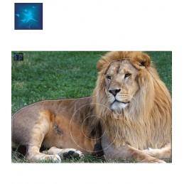 ACTILIA BLASON LION