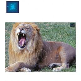 ACTILIA BLASON LION RUGISSANT