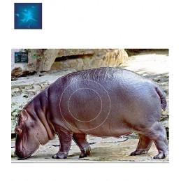 ACTILIA BLASON HIPPOPOTAME