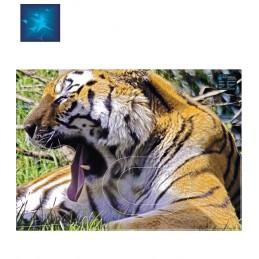 ACTILIA BLASON TIGRE 5
