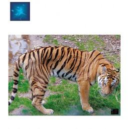 ACTILIA BLASON TIGRE 6