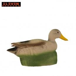 ELEVEN CANARD
