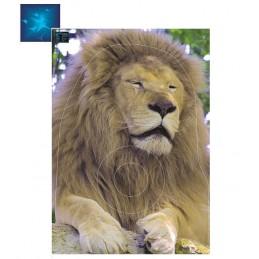 ACTILIA BLASON LION 3