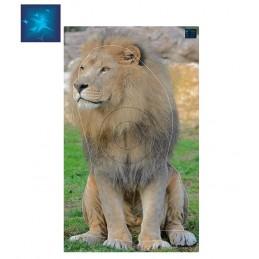 ACTILIA BLASON LION 5