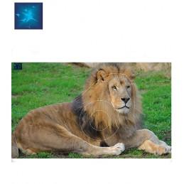 ACTILIA BLASON LION 6