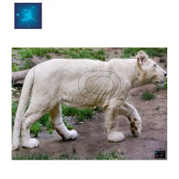 ACTILIA BLASON LIONNE BLANCHE