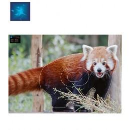ACTILIA BLASON PANDA ROUX 3